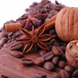 Nuts, anise, cinnamon, choco and coffee — Stock Photo