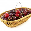 Basket with cherries - Stock Photo