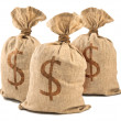 money bags — Stock Photo