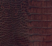 Brown crocodile leather texture — Stock Photo