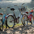 Royalty-Free Stock Photo: Three bicycles on a beach.