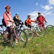 Stock Photo: Group of four adults on bicycles in countryside