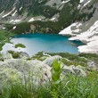 Mountain landscape with lake. — Stock fotografie