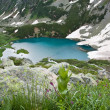 Mountain landscape with lake. - Stock Photo