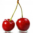 Cherry — Stock Photo #3306426