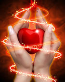 Coeur en mains — Photo