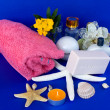 Stock Photo: Bath And Skincare Products