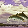 Stock Photo: Couple Of Dolphins Jumping