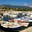 Colorful Boats In Marina Di Campo Harbor — Stock Photo #3860253