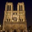 Night view of Notre Dame de Paris — Stock Photo #3046293