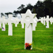 Stock Photo: Normandy AmericCemetery