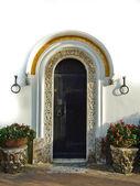 Front door — Stock Photo