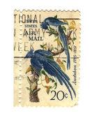 Старые почтовые марки из Сша с двумя птицами — Стоковое фото
