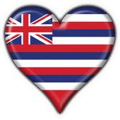 Hawaii (USA State) button flag heart shape — Foto Stock