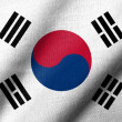 图库照片: 3D Flag of South Korewaving