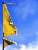 żółtą flagę — Zdjęcie stockowe
