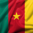 图库照片: 3D Flag of Cameroon satin