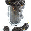 Mulberry — Stock Photo #3332250