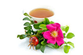 Tea rosehip — Stock Photo