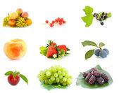 Owoc — Zdjęcie stockowe