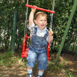 Stock Photo: Swinging