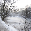 Stock Photo: Winter idyll