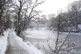 Idylle d'hiver — Photo