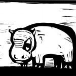 African Hippo — Stock Vector