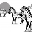 Zebra Herd — Stockvectorbeeld
