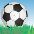 Stock Vector: Soccerball on fresh green grass under bl
