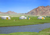 Traditional mongolian yurt in valley — Stock Photo