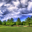 Panorama of a park in summer with clouds - Stock Photo