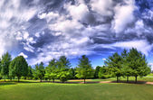 Panorama of a park in summer with clouds — Stock Photo