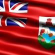 Flag of Bermuda - Stock Photo