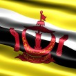 Flag of Brunei - Stock Photo