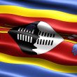 Flag of Swaziland - Stock Photo