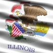 Flag of the state of Illinois - Stock Photo