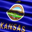 Flag of the state of Kansas - Stock Photo