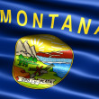 Flag of the state of Montana - Stock Photo