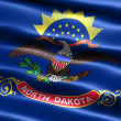 Flag of the state of North Dakota — Stockfoto #2854321