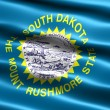 Stock Photo: Flag of the state of South Dakota