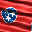 Flag of the state of Tennessee — Stock Photo