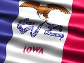 Flag of the state of Iowa — Stok fotoğraf