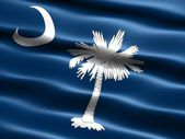 Flag of the state of South Carolina — 图库照片