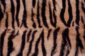 Animal Fur Background — Stock Photo