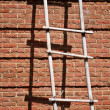 Brick Wall With Ladder — Stock Photo #2852690
