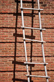 Brick Wall With Ladder — Stock Photo