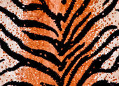 Tiger Print Background — Stock Photo