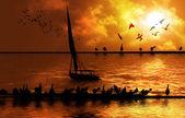 Nil ve felucca — Stok fotoğraf