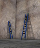 Ladders of success — Stock Photo